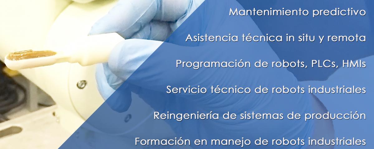 Nueva División Inser Services