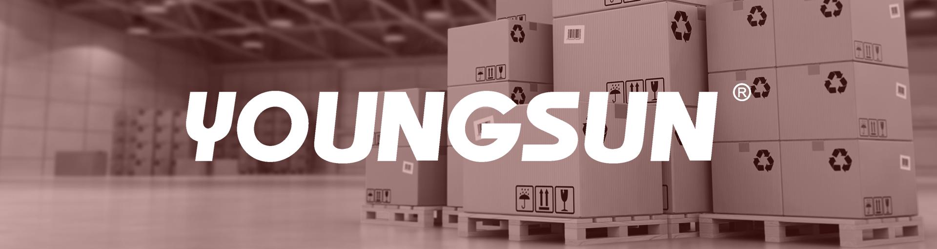 Para-link-Youngsun